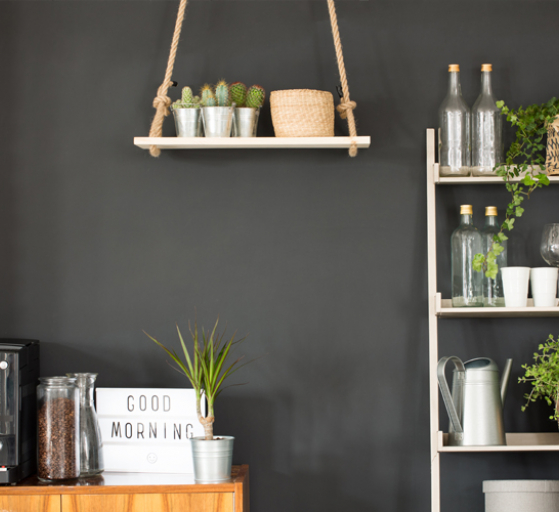 kitchen accessories including indoor plants